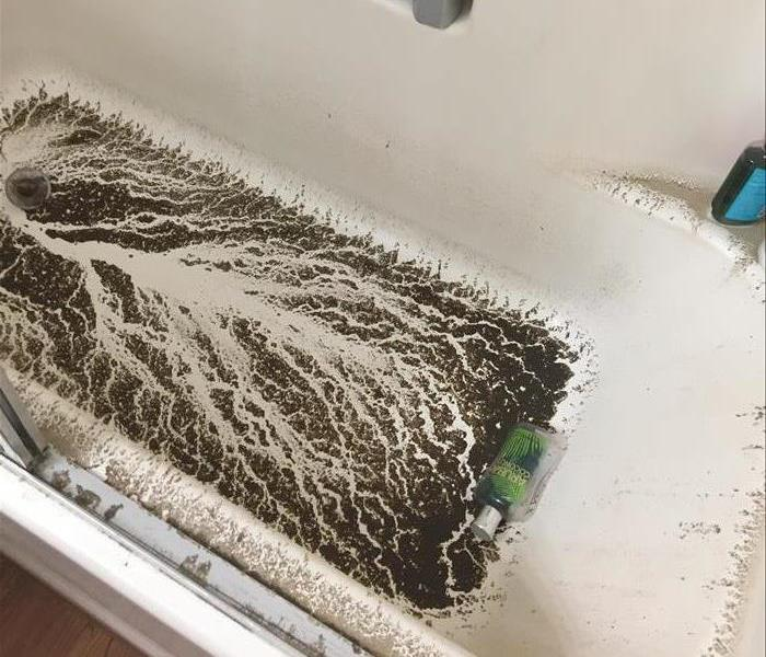 Picture shows a bath tub with a tree like pattern left after water from the drain backing up subsided